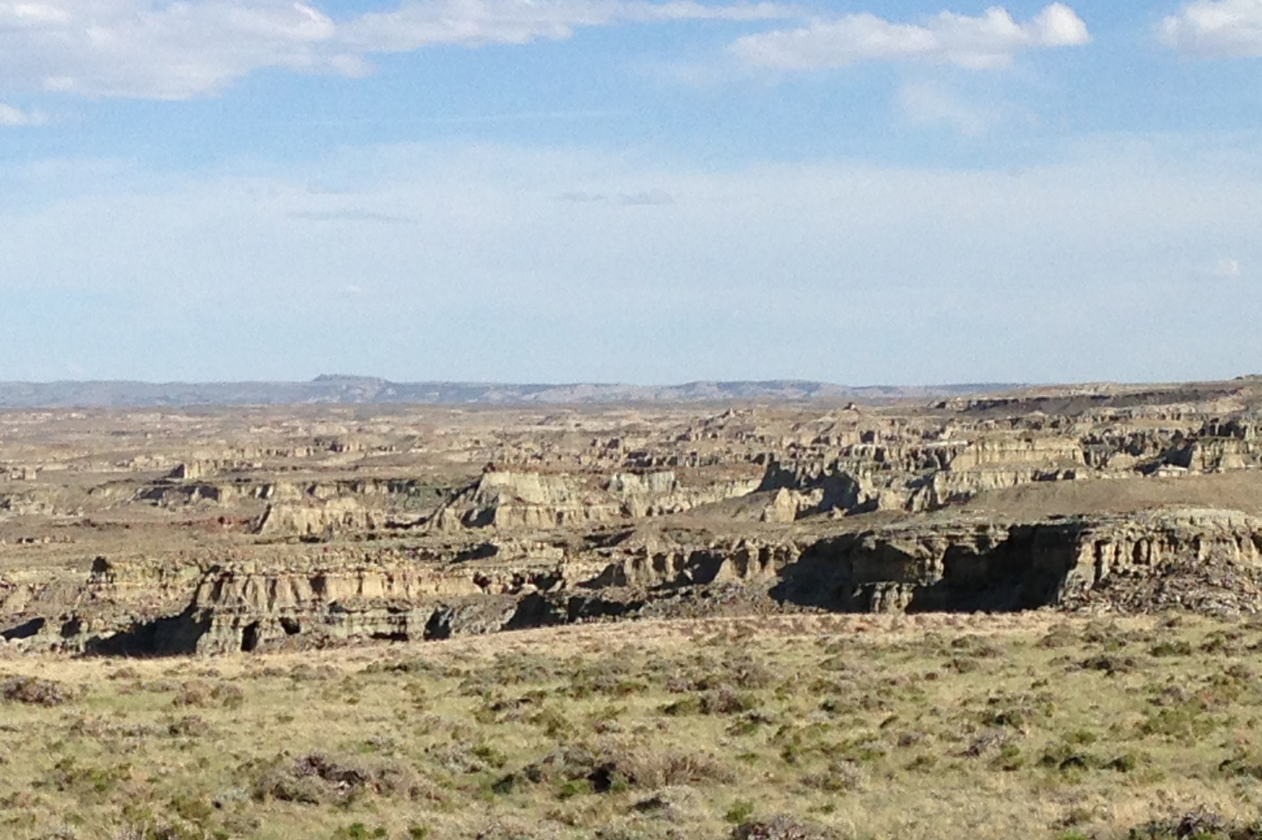 Badlands of the Washakie Basin of Wyoming one of the great places I spend my summers looking for fossils.