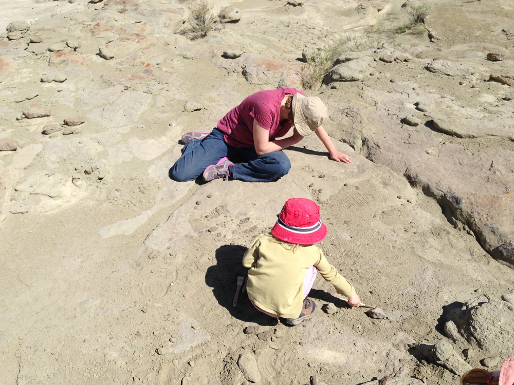Looking for tiny fossil mammal teeth in the Washakie Basin of Wyoming